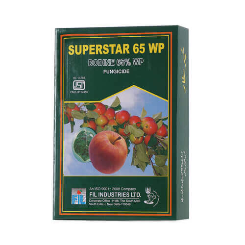 Acute Blackcurrant and Raspberry Fruit Energiser